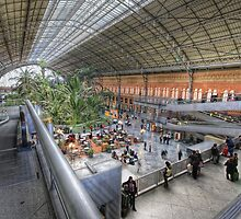 Puerta de Atocha Railway Station Hall #1 by servalpe