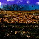 Twilight Farm by David's Photoshop