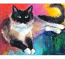Impressionistic Ragdoll Cat painting Svetlana Novikova Photographic Print