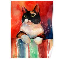 Watercolor Calico Tubby Cat painting Svetlana Novikova Poster