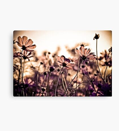 Dance with the wind...: EXPLORE Featured Work; Sold 3, Got 3 Featured Works Canvas Print