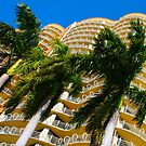 Ritz Carlton Coconut Grove, Miami, FLORIDA by Atanas Bozhikov NASKO