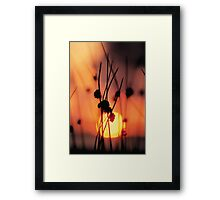 watercolor sunset Framed Print