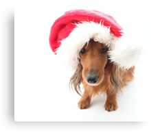 Sweet red-haired dachshund wearing Santa hat for Christmas Canvas Print