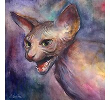 Sphynx Cat hissing painting Svetlana Novikova Photographic Print