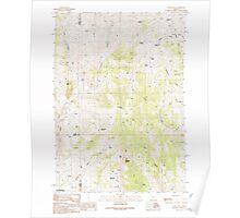 USGS Topo Map Oregon Castle Rock 279292 1990 24000 Poster