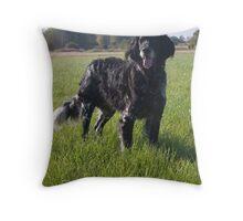 Conner - Large Munsterlander Throw Pillow