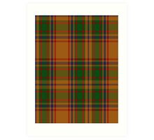 00386 Bird of Paradise Tartan  Art Print