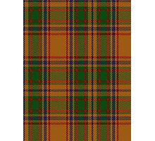 00386 Bird of Paradise Tartan  Photographic Print