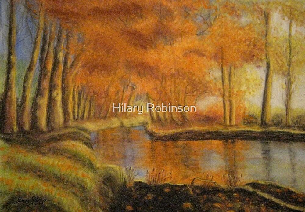 Braid River near Ballymena, Northern Ireland by Hilary Robinson