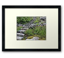 There May Be Trolls 12 Framed Print