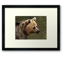 Are you still following me? Framed Print