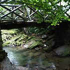 Rustic bridge by Dulcina
