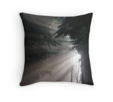 Light Rays Throw Pillow