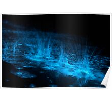 Bioluminescent Splashes Poster