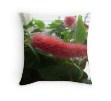Red prickly plant Throw Pillow