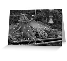 Lobsterscape - black and white Greeting Card