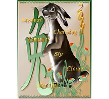 The Year Of The Rabbit Photographic Print