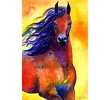 Arabian Horse #1 painting Svetlana Novikova Photographic Print