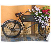 Pedals for Petals Poster