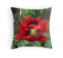 Red and Black Flower, osbourne House, Isle of Wight Throw Pillow