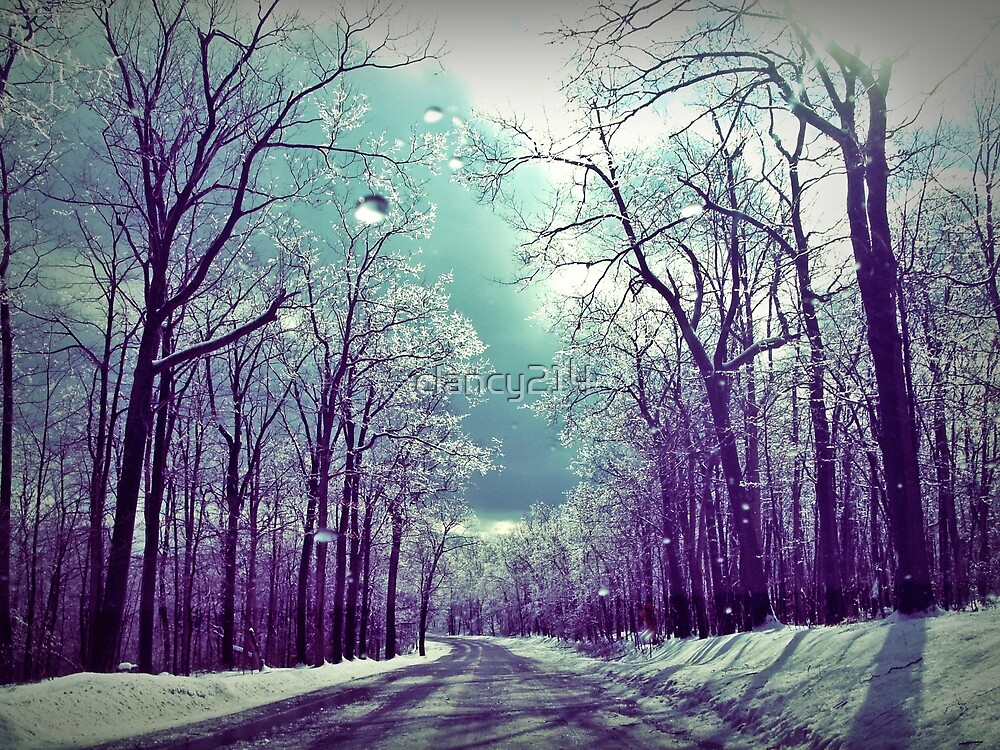 the winter road by clancy214