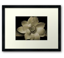 The LoTuS Framed Print