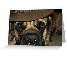 One Cool Mastiff Greeting Card