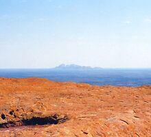 The Olgas from Uluru by Michael John