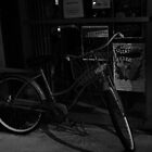 Life Cycle by mojo1160