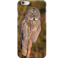 A strong gaze into the prairie fields  iPhone Case/Skin