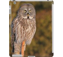 A strong gaze into the prairie fields  iPad Case/Skin