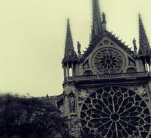 Paris architecture Sticker