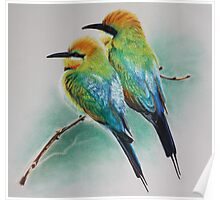 Rainbow Bee Eaters Poster