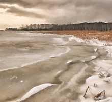Marshy Point by karenmessick