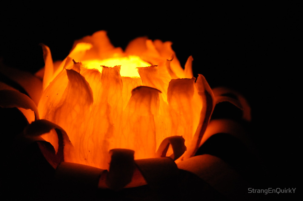 Turnip Lantern in Zürich by StrangEnQuirkY