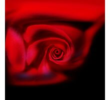 A rose by any other name ..... Photographic Print