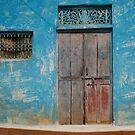 The Other Blue Door by David Reid