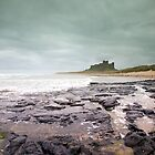 Bamburgh Castle by Gerry  Balding