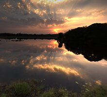 Sunset at Ranthambore Park by Christopher Cullen