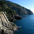 Via Dell'Amore Scenic Pathway - Cinque Terre by Marilyn Harris