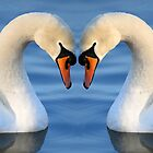 Swan Heart II by RedMann
