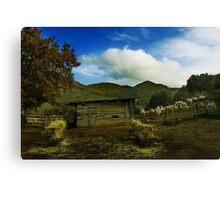 Sheep Landscape Canvas Print