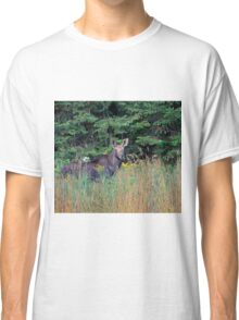 Moose in the meadow Classic T-Shirt