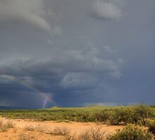 Lightning Bolt with Rainbow by Cathy L. Gregg