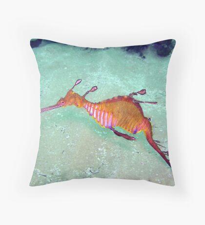Terrigal Weedy Sea Dragon  Throw Pillow
