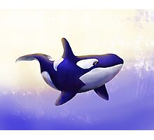 Blue Orca Painting. Photographic Print