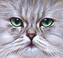 Chinchilla Cat by Elena Kolotusha