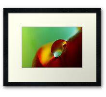 Tulip Drop Framed Print