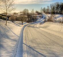 Winding road by Veikko  Suikkanen